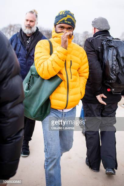 Frank Ocean attends the Louis Vuitton Menswear Fall/Winter 2019-2020 show as part of Paris Fashion Week on January 17, 2019 in Paris, France.