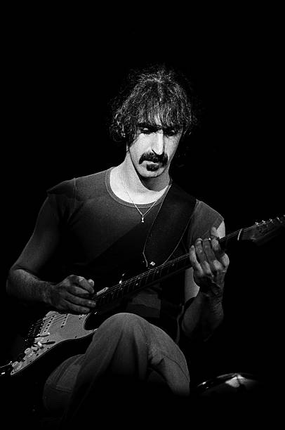Frank Zappa Performs Live Wall Art