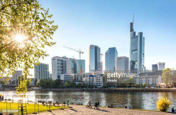 frankfurt skyline with sun - water's edge stock pictures, royalty-free photos & images