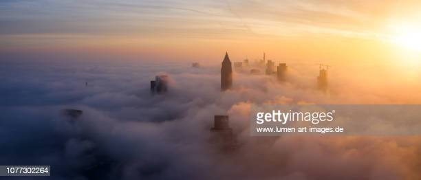 frankfurt sunrise aerial panorama, skyscrapers sticking out of the low fog - frankfurt am main stock-fotos und bilder