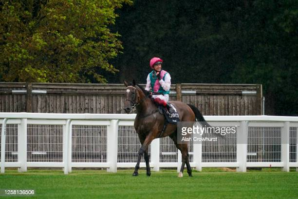 Frankie Dettori after riding Enable to win The King George VI And Queen Elizabeth Qipco Stakes at Ascot Racecourse on July 25, 2020 in Ascot,...