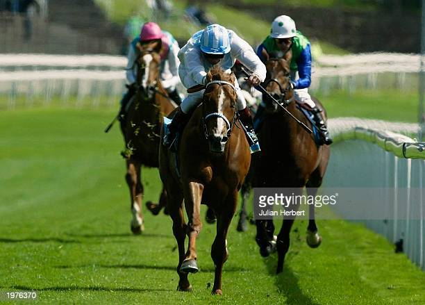 Frankie Dettori and Dutch Gold lead the field home to land The Victor Chandler Chester Vase Race run at Chester Racecourse on May 6 2003 in Chester...