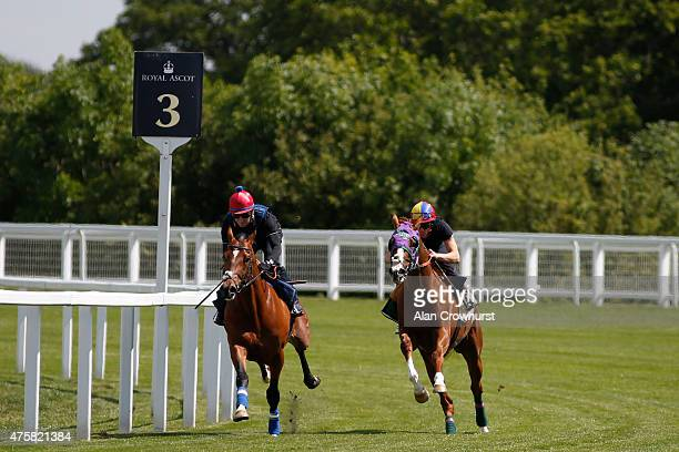Frankie Dettori riding California Chrome turn right into the straight with Aktabantay and Michael Hills in a gallop prior to racing at Royal Ascot at...