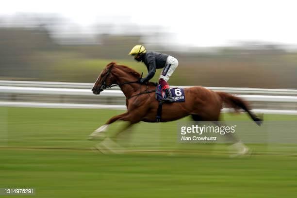 Frankie Dettori riding Stradivarius on their way to winning The Longines Sagaro Stakes at Ascot Racecourse on April 28, 2021 in Ascot, England....