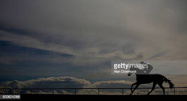 Frankie Dettori riding Swiss Range pull up after winning The EBF Stallions Newmarket Community Raceday Maiden Fillies' Stakes at Newmarket racecourse...