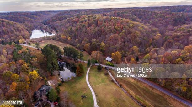 Franklin Tennessee Fall Colors