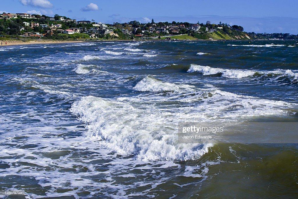 waves on the beach frankston