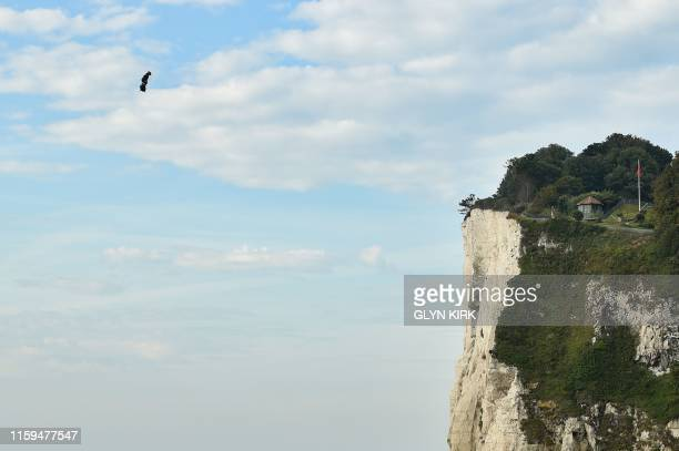 TOPSHOT Franky Zapata on his jetpowered flyboard lands at St Margaret's Bay in Dover on August 4 during his attempt to fly across the 35kilometre...