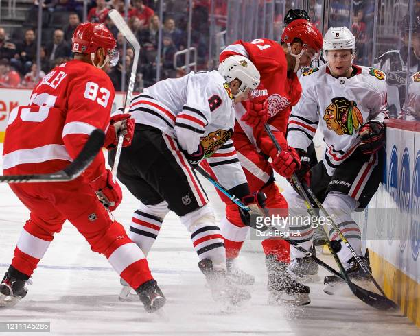 Frans Nielsen and Trevor Daley of the Detroit Red Wings battles along the boards for the puck with Dominik Kubalik and Olli Maatta of the Chicago...