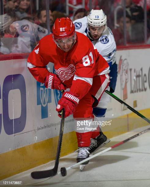 Frans Nielsen of the Detroit Red Wings battles along the boards for the puck with Cedric Paquette of the Tampa Bay Lightning during an NHL game at...