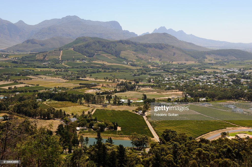 South Africa : Illustration : News Photo