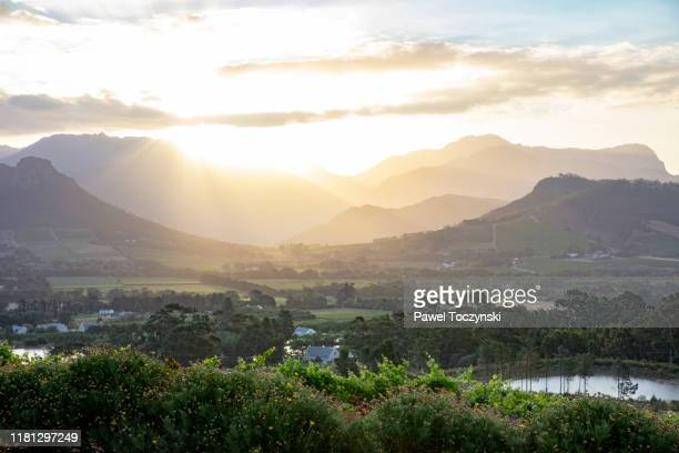 franschhoek town and vineyards seen at sunset, south africa, 2018 - stellenbosch stock pictures, royalty-free photos & images