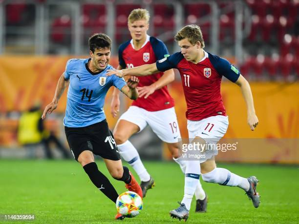Fransisco Ginella of Uruguay U20, Erling Haland of Norway U20, Jens Hauge of Norway U20 during the FIFA U-20 World Cup Poland 2019 group C match...