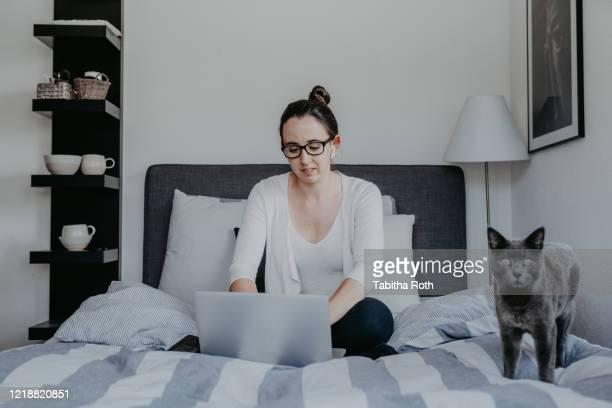 frau arbeitet von zu hause im home office mit airpods drahtlosen bluetooth kopfhörer mit katze haustier - frau fotografías e imágenes de stock