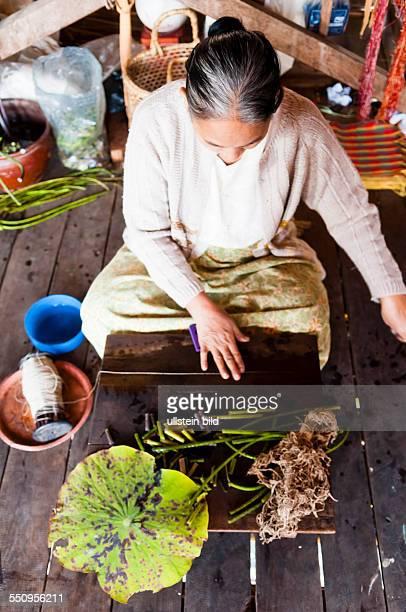 Frau beim Gewinnen von Lotus Seide