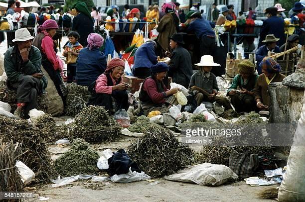 Frauen verkaufen Kräuter auf dem Markt in Lhasa Juli 1995