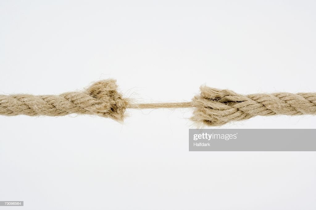Frayed rope : Stock Photo