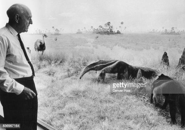 Fred Brandenburg with anteaters in SA. Exhibition he helped collect in 1925. Credit: Denver Post