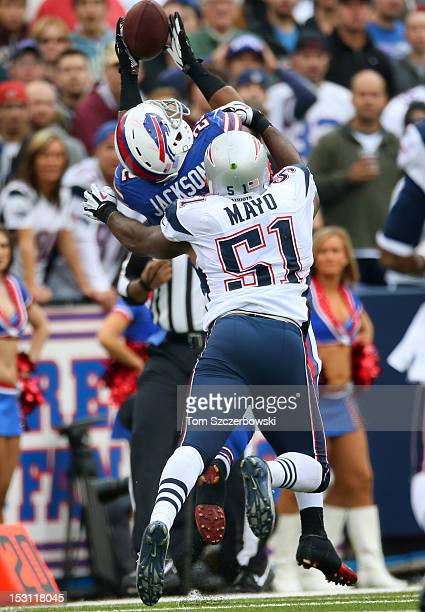 Fred Jackson of the Buffalo Bills catches a pass during an NFL game as Jerod Mayo of the New England Patriots defends at Ralph Wilson Stadium on...