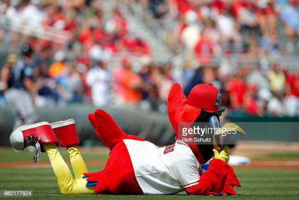 Fredbird mascot of the St Louis Cardinals performs during a spring training baseball game against the Atlanta Braves at Roger Dean Stadium on March...