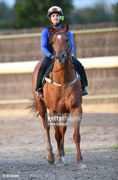 Freddie Lenclud riding He Or She from David Hayes and Tom Dabernig stable is seen during a trackwork session at Flemington Racecourse on October 7...