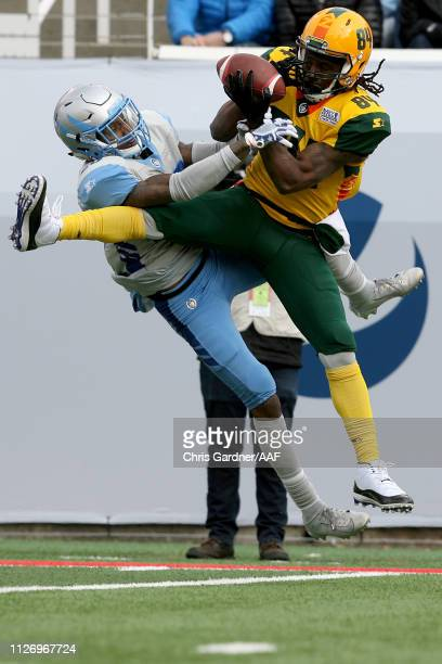 Freddie Martino of Arizona Hotshots makes a catch against the Salt Lake Stallions during their Alliance of American Football game at Rice Eccles...