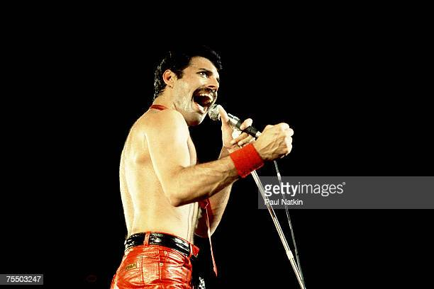Freddie Mercury of Queen on 9/19/80 in Chicago Il in Various Locations