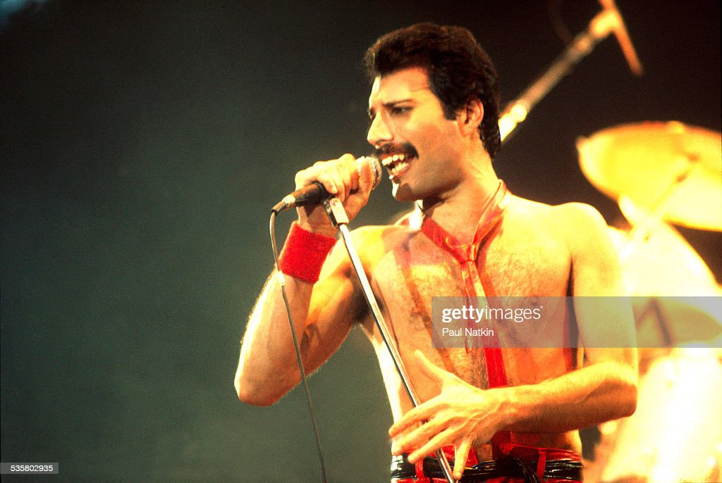 Freddie Mercury - Star-Portrait, News, Pictures Studies and first steps in