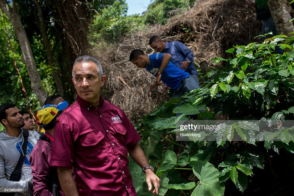 Freddy Bernal, former Caracas mayor and current CLAPs overseer, looks at the harvest in the rural area of La Vega on the outskirts Caracas, Venezuela, on Saturday, July 2, 2016. In an attempt to regain control, President Nicolas Maduro has tapped loyal neighborhood groups, called Local Committees for Supply and Production (CLAPs), and put them in charge of distributing as much as 70 percent of the nation's food. Photographer: Manaure Quintero/Bloomberg via Getty Images