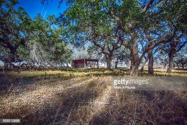 Fredericksburg Meadow