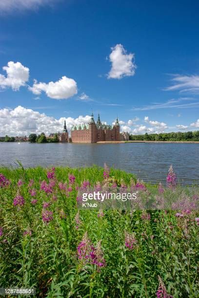 frederiksborg castle with clear blue sky and pink flower in water front of lake in park, famous landmark for tourist at hillerod city close to copenhagen capital city of denmark, europe, scandinavia - château de frederiksborg photos et images de collection