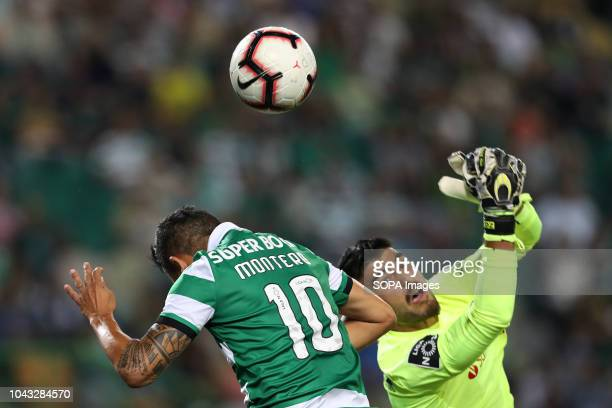 Fredy Montero of Sporting CP vies for the ball with Amir Abedzadeh of Marítimo during League NOS 2018/19 football match between Sporting CP vs...