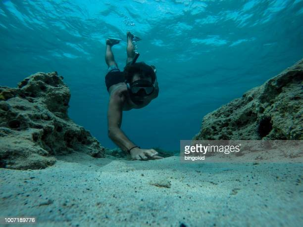 free diver reaching for sea shells at the bottom of the sea - ocean floor stock pictures, royalty-free photos & images
