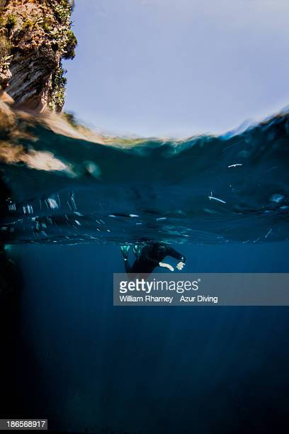 Free diver swimming in rays of light