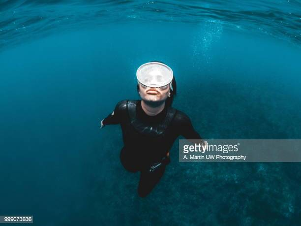 free diving - aqualung diving equipment stock pictures, royalty-free photos & images