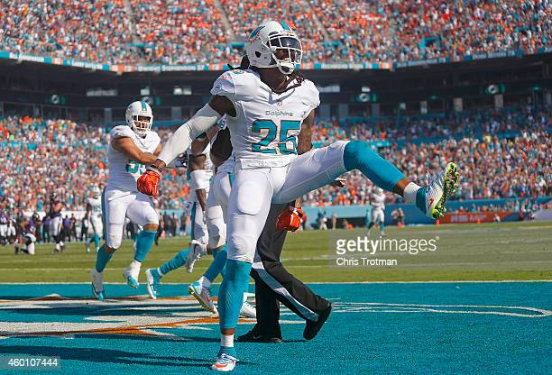 Free safety Louis Delmas of the Miami Dolphins celebrates his team's interception in the second quarter of play against the Baltimore Ravens during a...