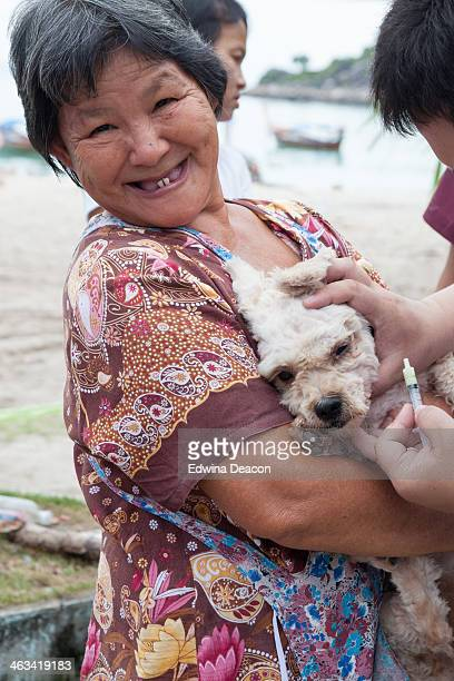 Free sterilisation and vaccination project is taking place on one of the Thai islands - run by a charity organisation that care for...