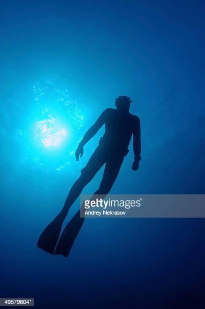 Freediver, near Kas, Lycia, Province of Antalya, Turkey