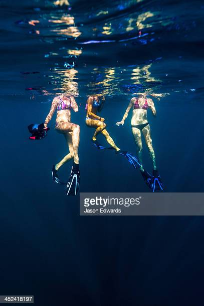 Free-divers in bikinis float on the ocean surface with a video camera.