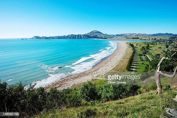 freedom camping at tolaga bay. - gisborne stock photos and pictures