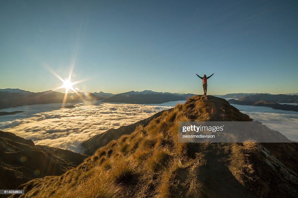 Freedom in nature : Stock Photo