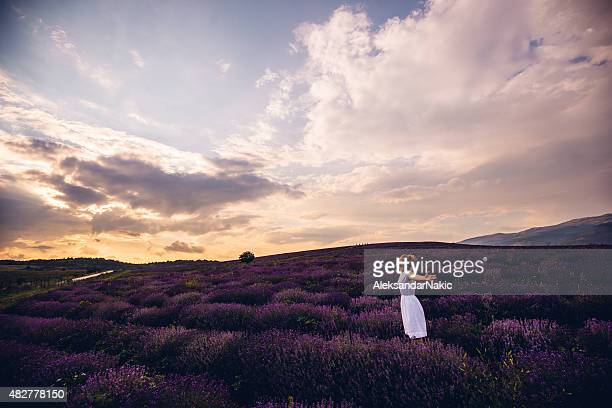 freedom - provence alpes cote d'azur stock pictures, royalty-free photos & images