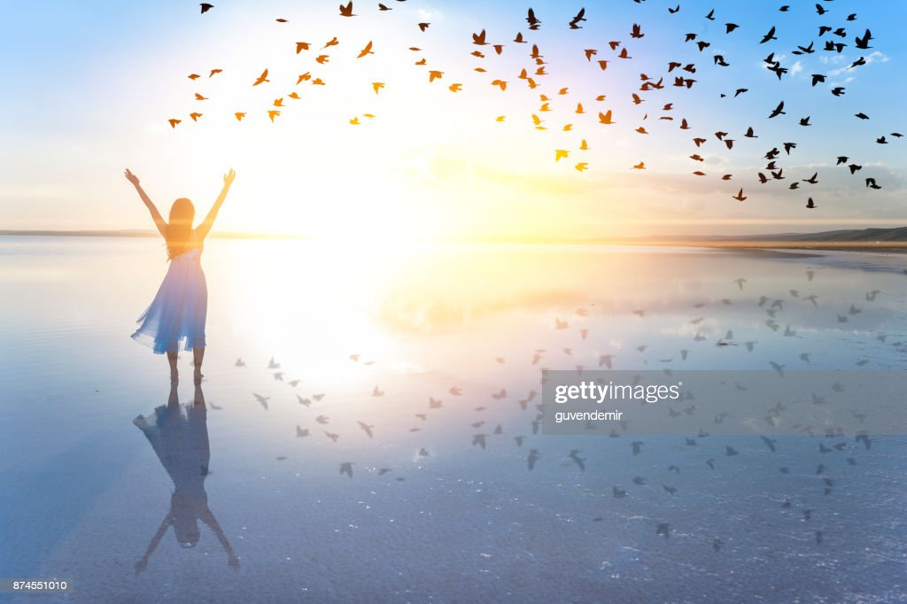 Freedom : Stock Photo