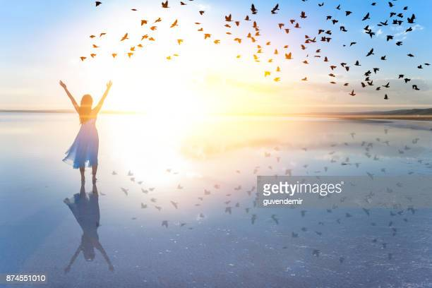 freedom - heaven stock pictures, royalty-free photos & images