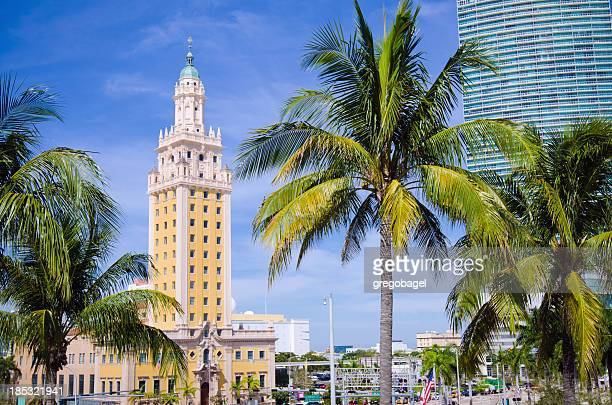 freedom tower in downtown miami, fl - downtown miami stock pictures, royalty-free photos & images