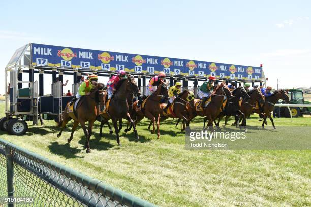 Freedom's Light ridden by Jamie Mott begins in the Warrnambool Tyreplus SV Maiden Highweight Plate at Warrnambool Racecourse on February 07, 2018 in...