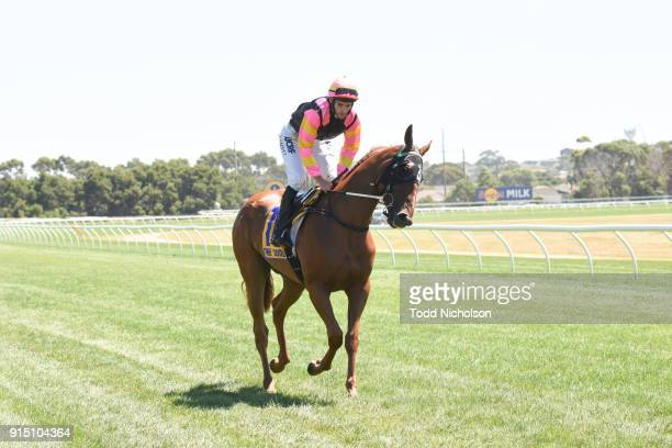Freedom's Light ridden by Jamie Mott goes out for the Warrnambool Tyreplus SV Maiden Highweight Plate at Warrnambool Racecourse on February 07, 2018...