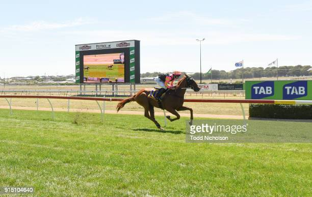 Freedom's Light ridden by Jamie Mott wins the Warrnambool Tyreplus SV Maiden Highweight Plate at Warrnambool Racecourse on February 07, 2018 in...