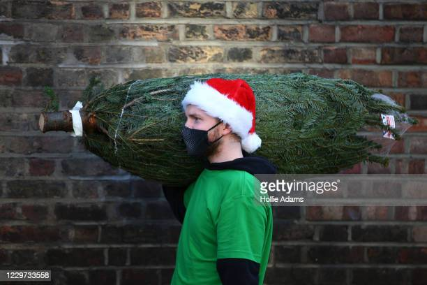 Freelance music producer Will Stokes delivers a Christmas tree to a flat in Isle of Dogs on November 22, 2020 in London, England. Green Elf Trees,...