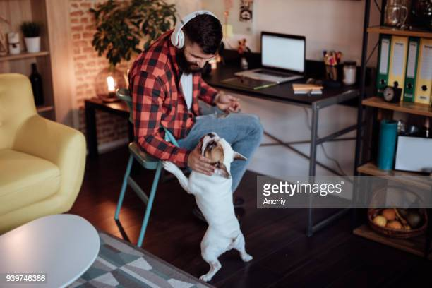 freelancer working from home and playing with his dog - millennial generation stock pictures, royalty-free photos & images